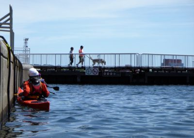 soo locks kayaks and dog walkers